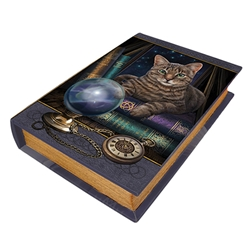 Fortune Teller Book Box