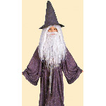 Gandalf the Gray Childrens Costume CU38781